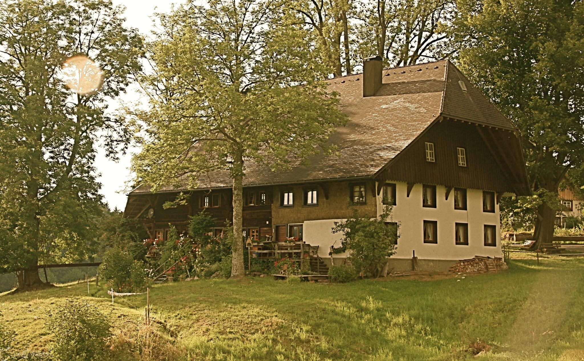 In den Dörfern findet man oft herrliche alte Schwarzwaldhöfe, hier der Hierauf in Saig (Anno 1758)