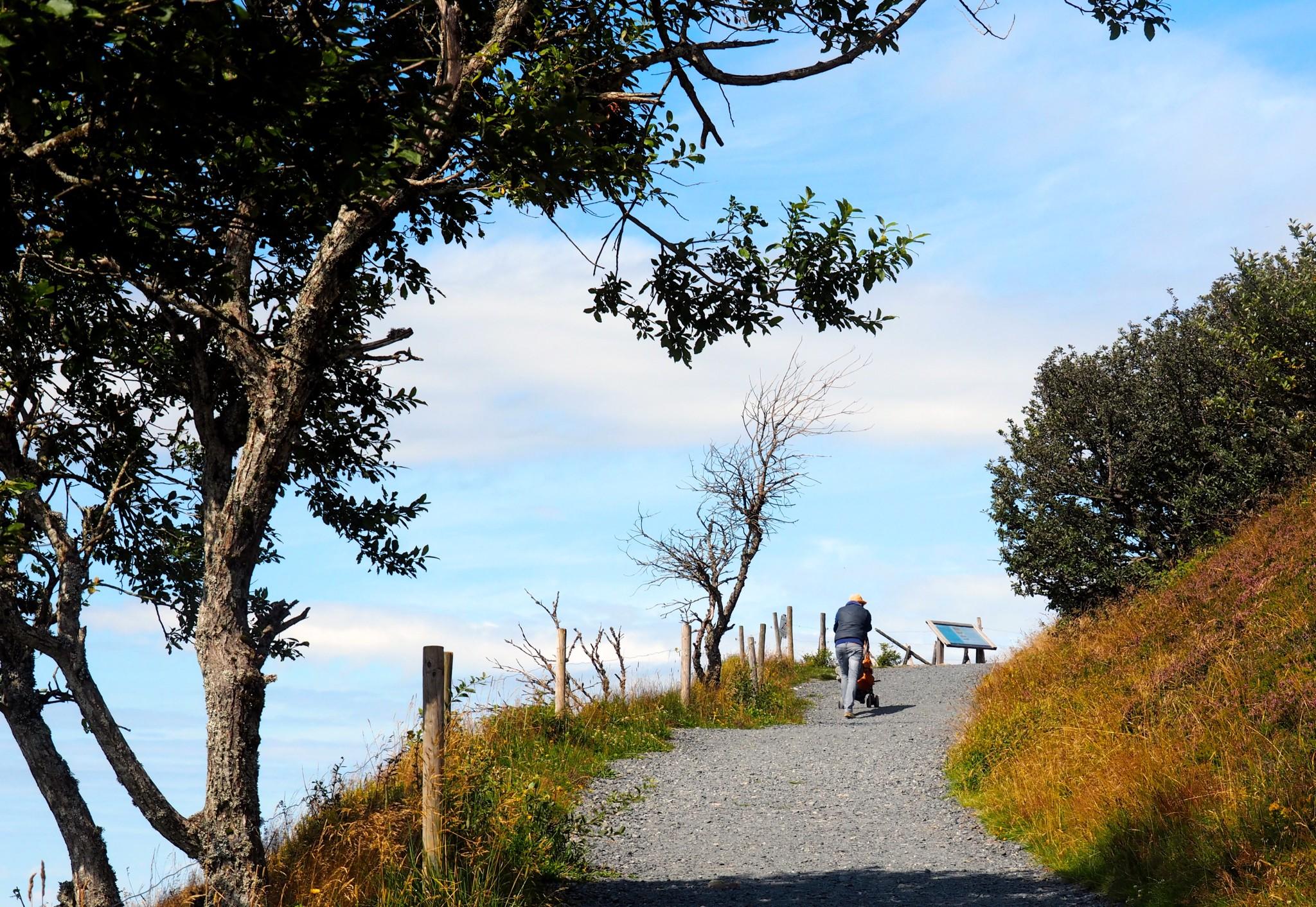 Schieben mit Aussicht: Auf dem Belchen-Gipfelrundweg