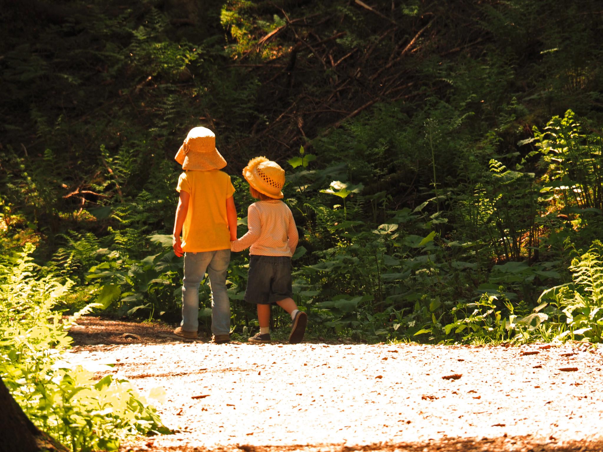 Reisen fördert die Bindung zwischen Geschwistern.