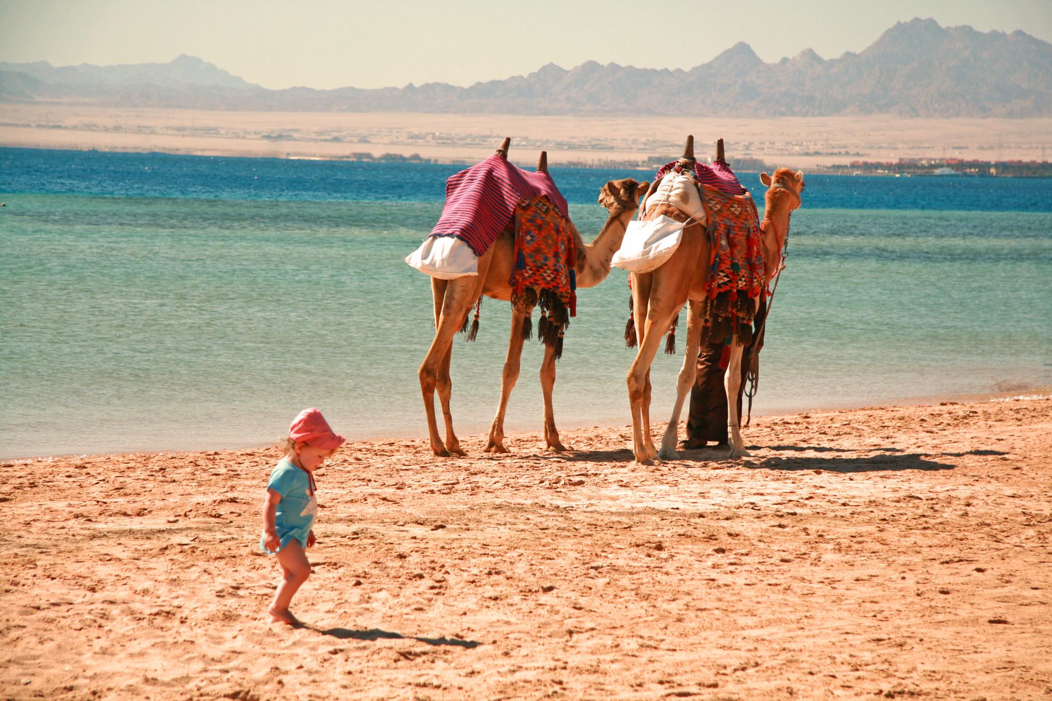 Reisen mit Kleinkindern