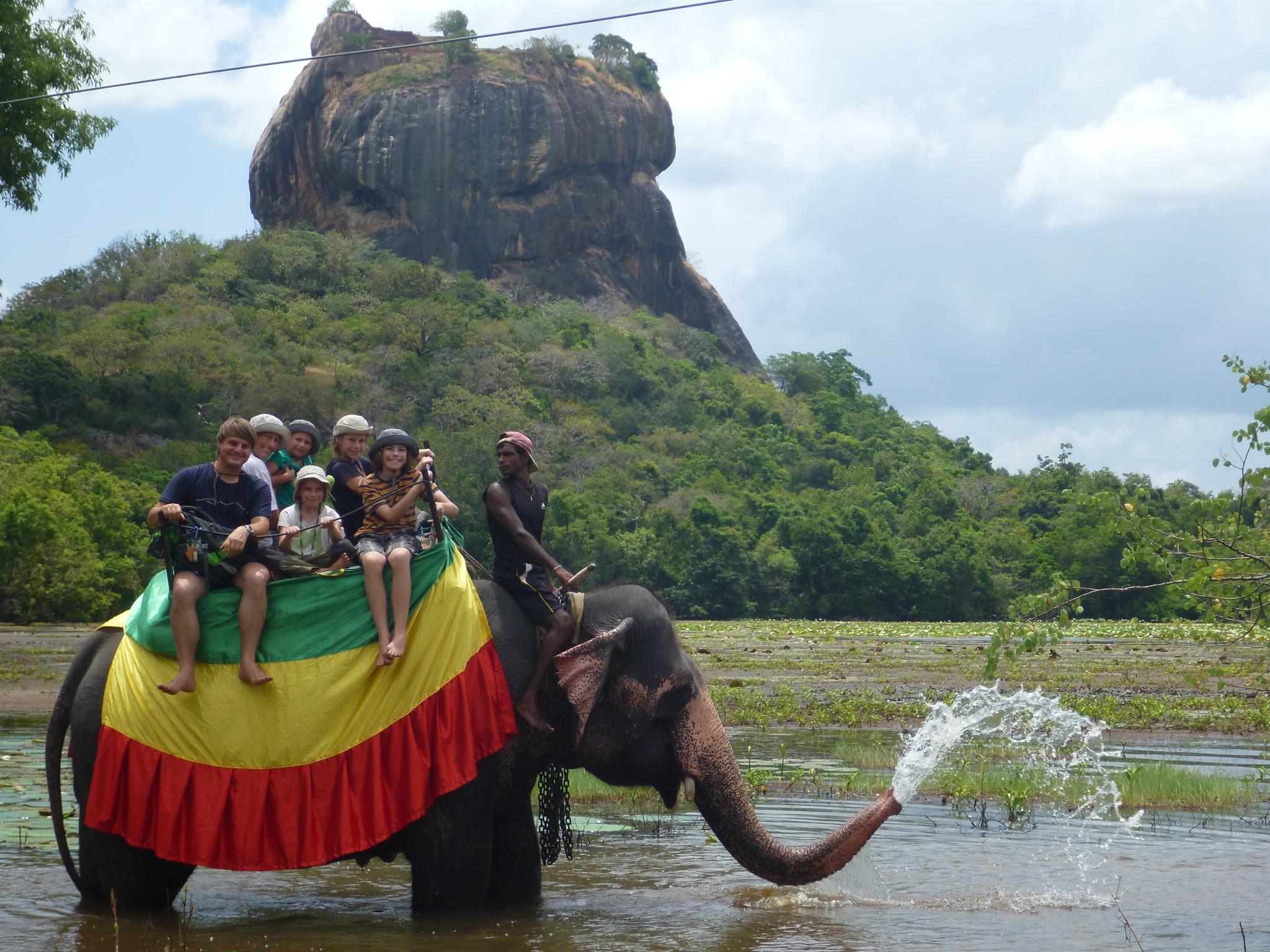 Zu sechst auf einem Elefanten in Sri Lanka